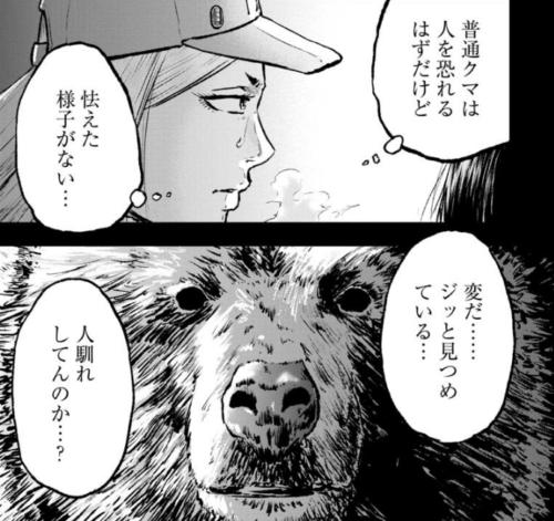 クマ撃ちの女